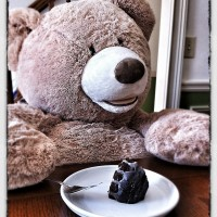 Teddy Bear Dessert