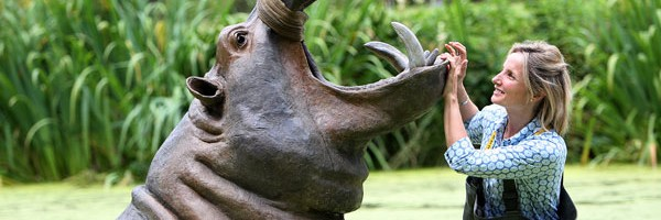 Hippo sculpture